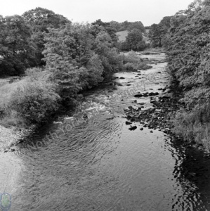 Fishing, River Swale, Easby